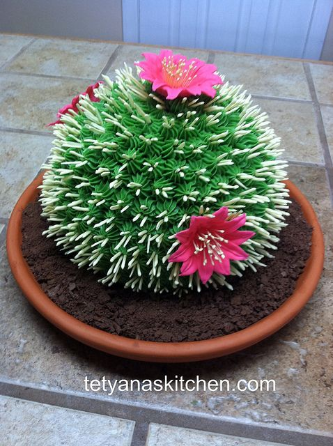 One more cactus cake