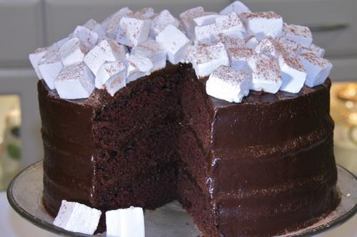 Hot Cocoa Cake with homemade marshmallows.