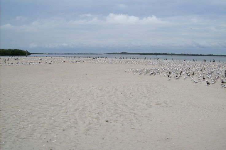 When the tide comes in this island as large as it is will be covered