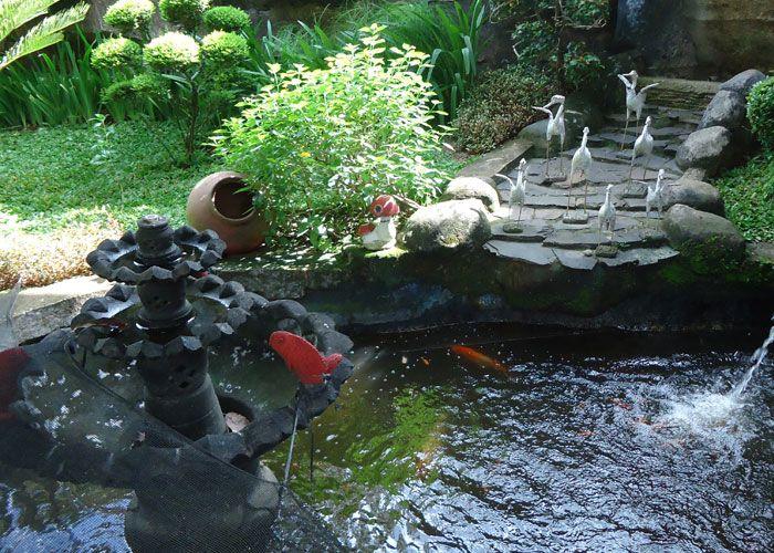 kolam ikan mungil dalam rumah home interior collection
