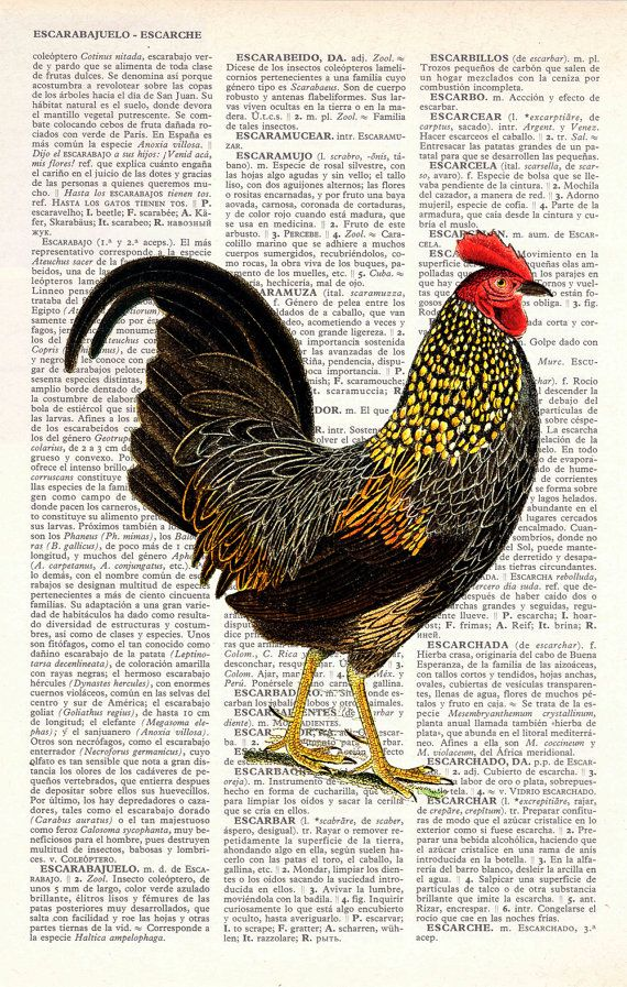 art - Rooster