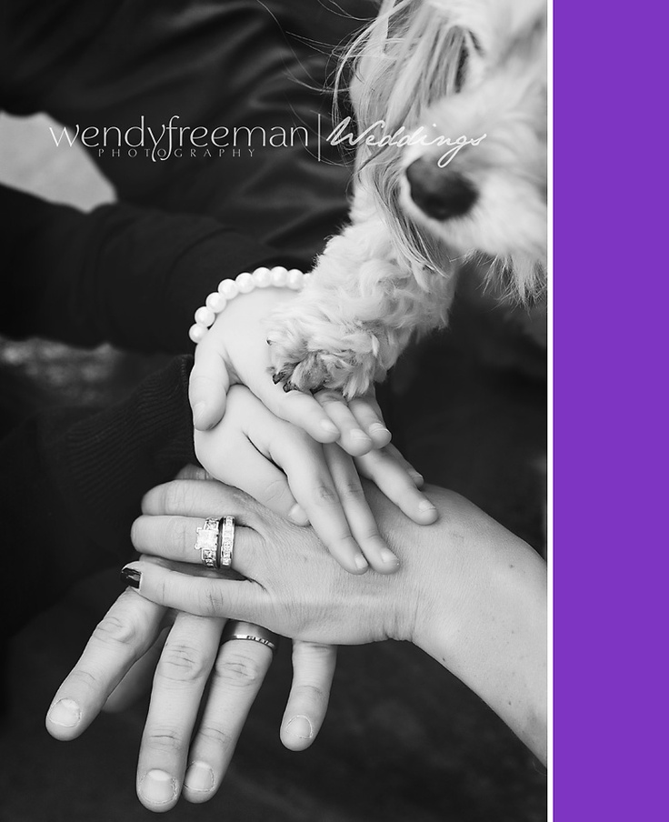 including family dog in wedding pictures, dog wedding pose ideas