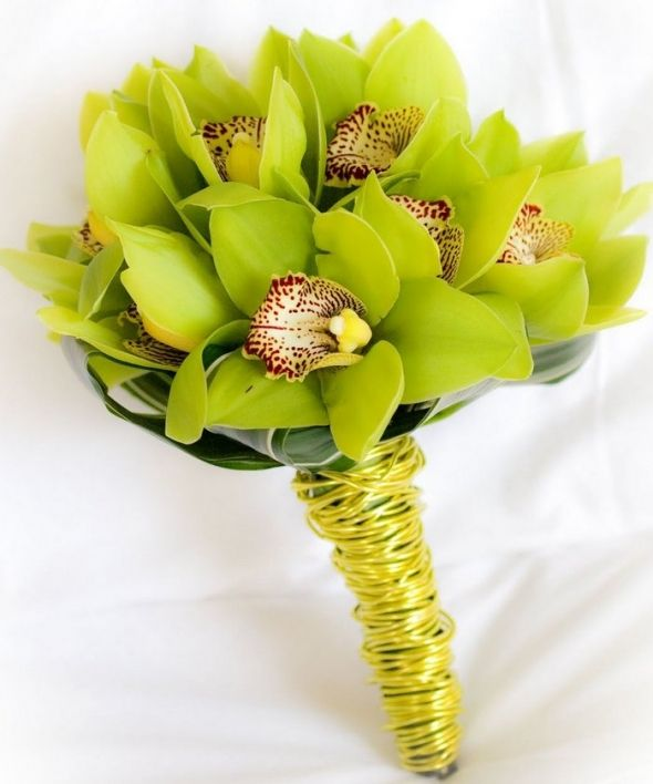 orchid centerpieces - Bing Images  love this chartreuse colour! would look fabulous against purple and blue linens