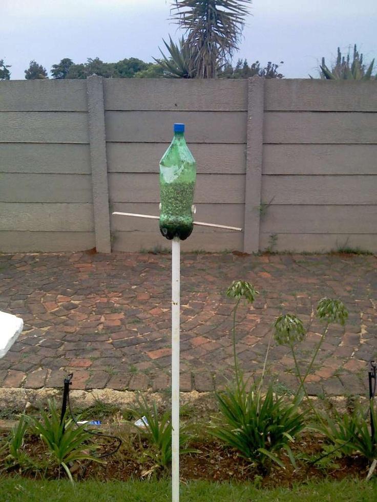 Soda bottle bird feeder design love pinterest for How to make a bottle bird feeder