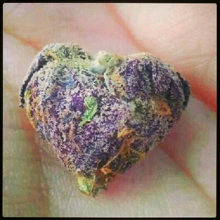 Purple weed nug