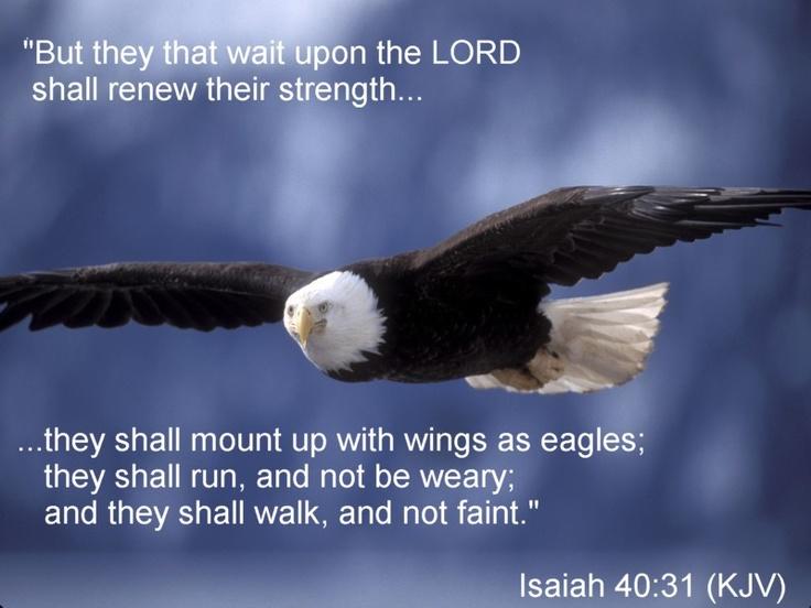 Isaiah 40 13 inspiration amp scripture pinterest