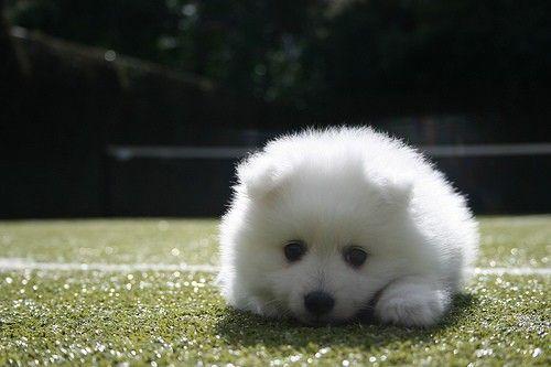 I wanna squish it
