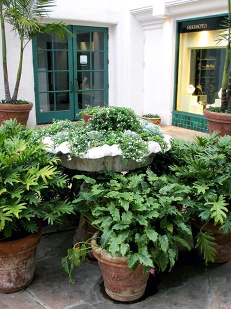 The Idea: Use an Old Fountain as a Planter