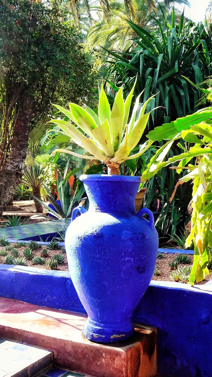 jardins de majorelle marrakech pinterest. Black Bedroom Furniture Sets. Home Design Ideas