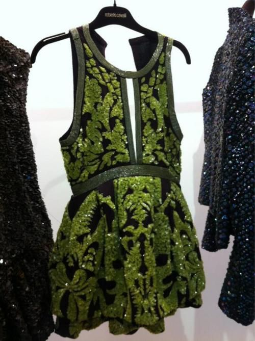 Oh this has my name written all over it!#robertocavalli