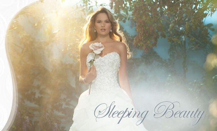 Princess Aurora Wedding Dress
