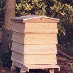 English hive top