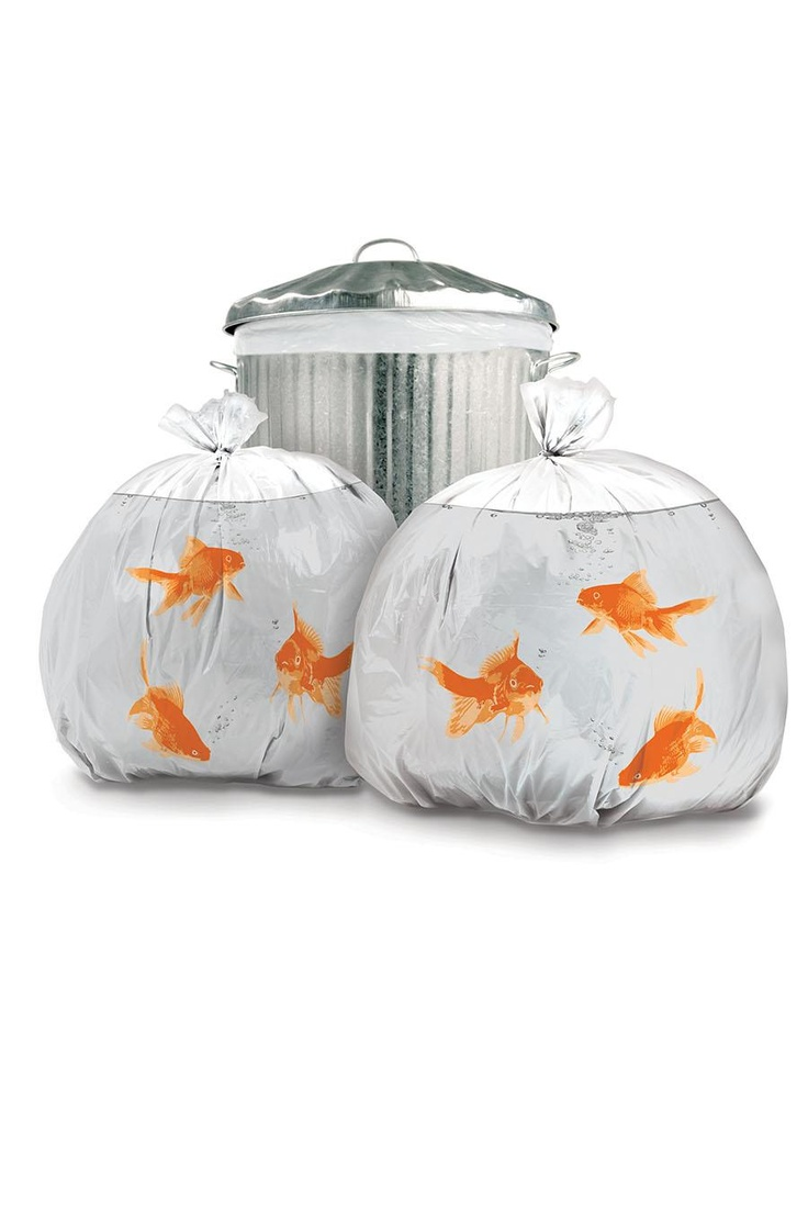 HAHA! Goldfish Bin Bags I'm sure everybody would look twice at your trash