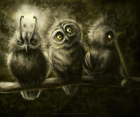 See No Evil Hear No Evil Speak No Evil Owls Pinterest