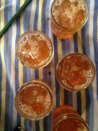 Pin by newtonberry on canning, recipes, ideas for canning jars | Pint ...