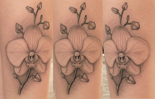 black and white orchid tattoo | Tattoons | Pinterest