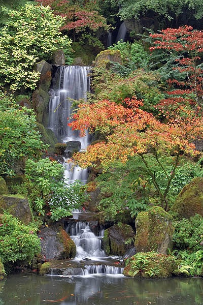 Japanese gardens in portland oregon waterfalls to hike for Garden fountains portland oregon