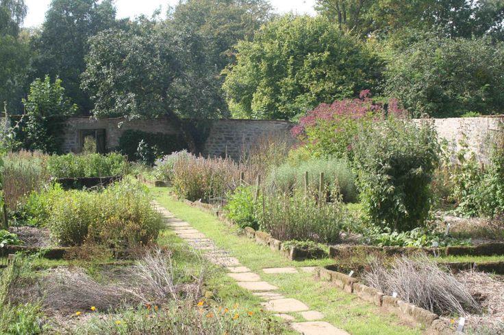 Medicinal Herb Garden Design Photograph Found on foodmatte