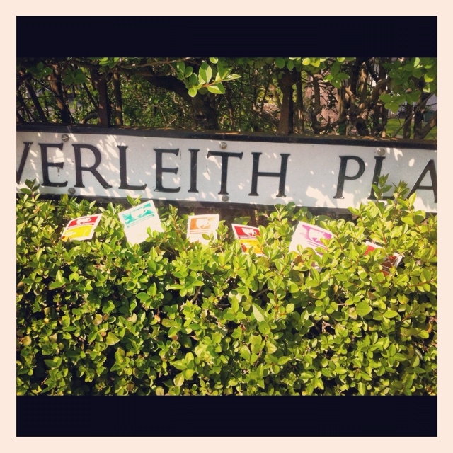 Enjoying the sun near Inverleith Park, Edinburgh.....