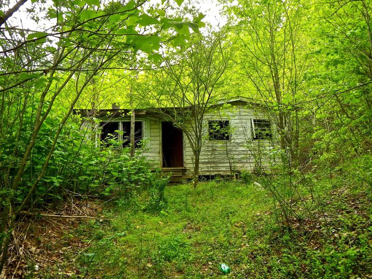 An abandoned house in the woods imgur faded pinterest - The house in the woods ...