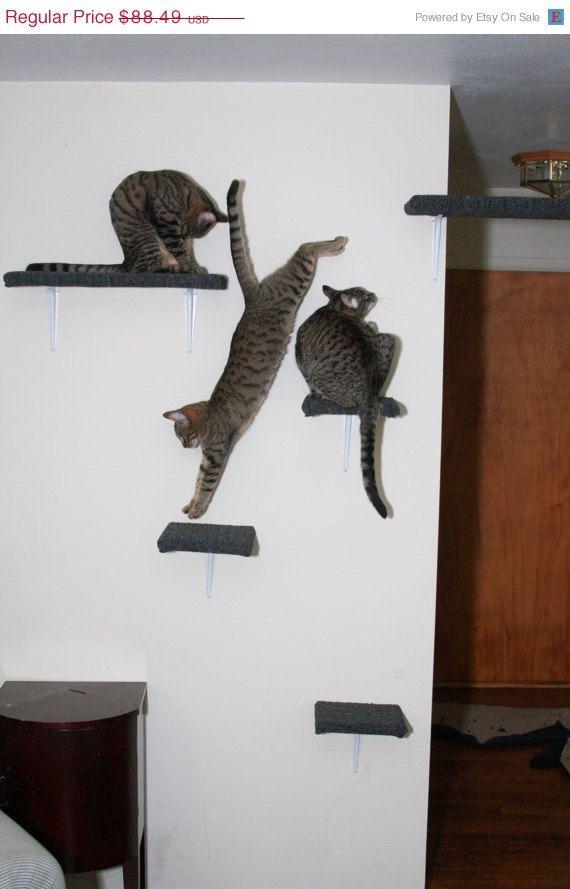 Cat Shelves Awesome: Cat shelves. Cat tower shelves. .