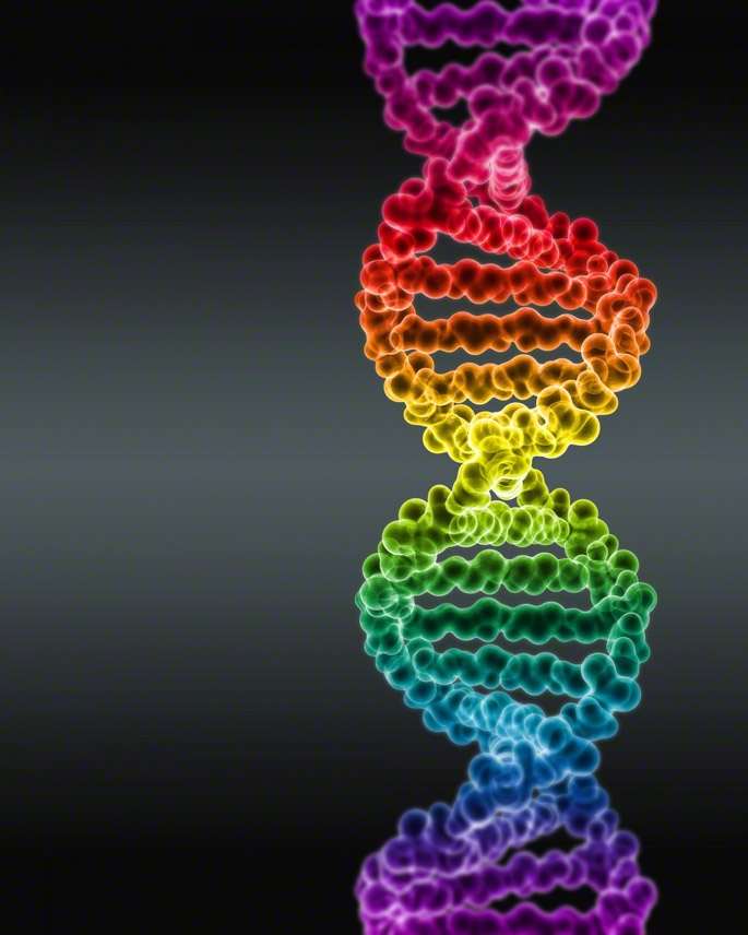 spectrum colored dna by digital pop