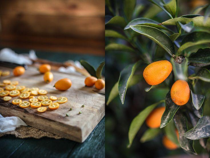 Adventures in Cooking: Candied Kumquat & Cream Cheese Tart