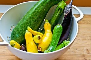 ... Lover's Vegetable Stir Fry with Eggplant, Zucchini, and Yellow Squash