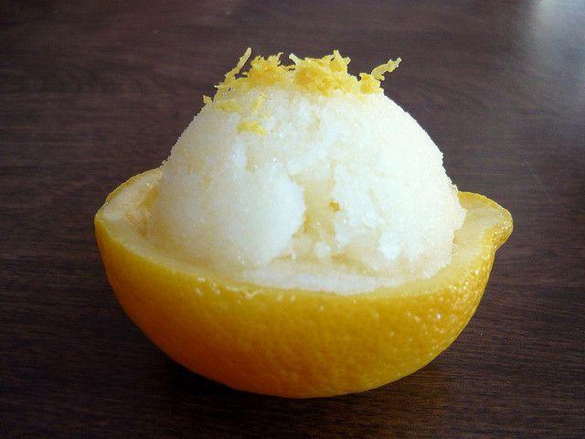 meyer lemon mousse lemon sorbet lemon sorbet lemon sorbet meyer lemon ...