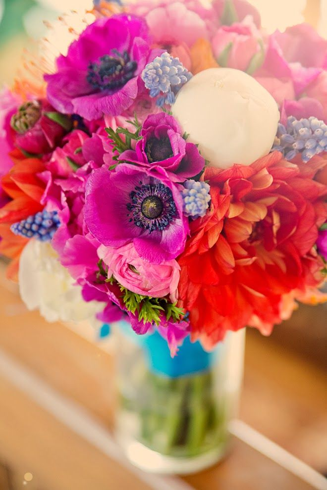 beautiful blooms <3