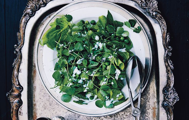 Fava Bean and Pea Salad with Poppy Seed Dressing Can't find favas ...