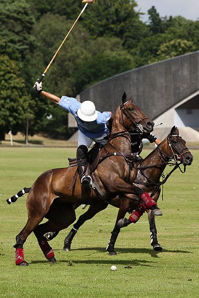 Polo ponies -- 'On the charge' by Peter Meade