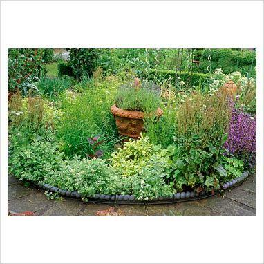 Small Herb Garden With Ornate Edging Good Ideas Pinterest