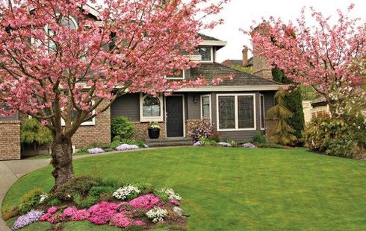 Enhance curb appeal with landscaping for Curb appeal landscaping