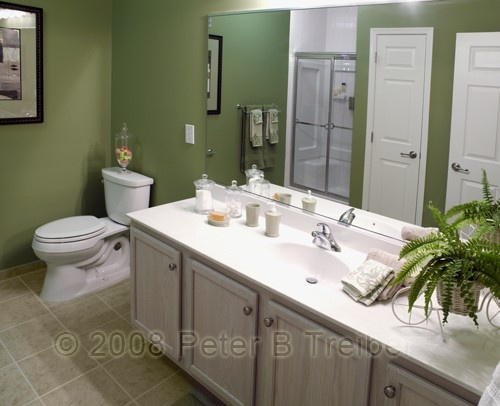 Olive green bathroom walls home interiors bathrooms for Green bathroom ideas