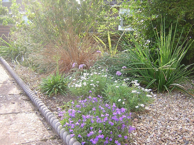 Rock Landscaping Underlayment : Gravel xeriscape submited images