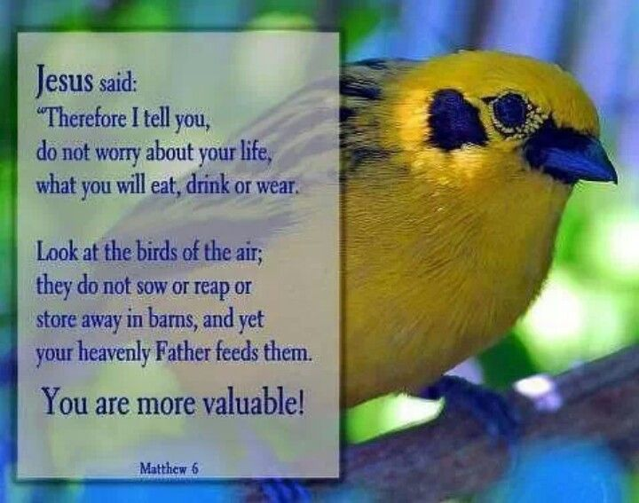 You and I are very valuable to God | Good sayings | Pinterest