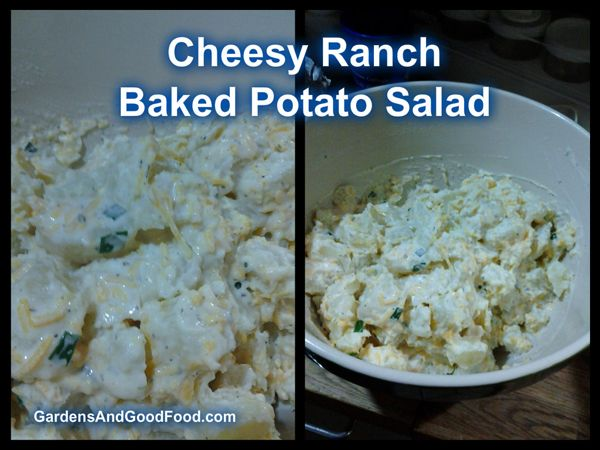 Cheesy Ranch Potato Bake Recipe — Dishmaps