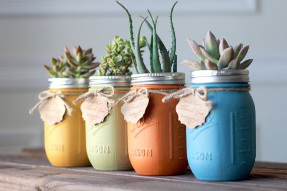 Clever: Succulents in mason jars that have been painted on the inside.