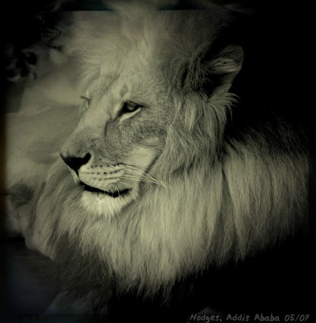 Haile Selassie  aka th...
