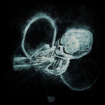 fouad mezher fetus   illustrationFetus Illustration
