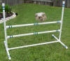 The yard usually has a bunch of dog agility and obedience equipment in it during Spring, Summer, and Fall.