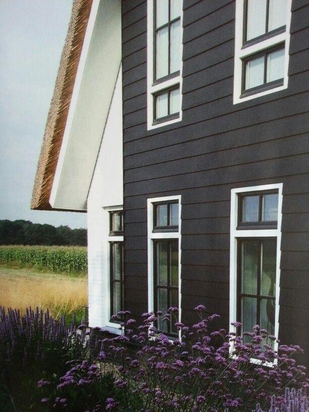 Dark Gray House Exterior With White Trim House Exterior