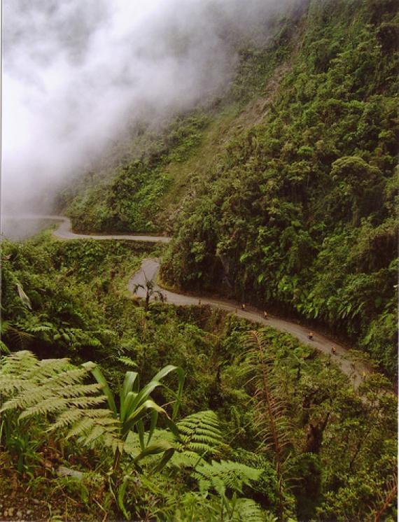 North yungas road death road bolivia panamerican highway pinte