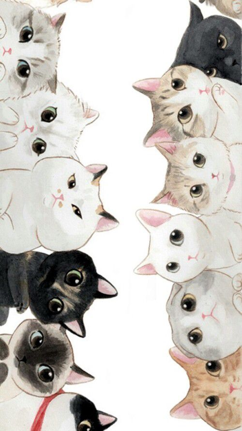 Group Of Cute Cat Wallpaper Iphone