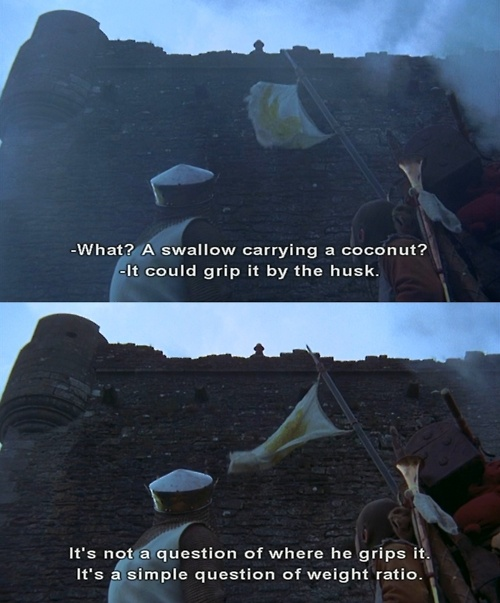 Monty python swallow quote