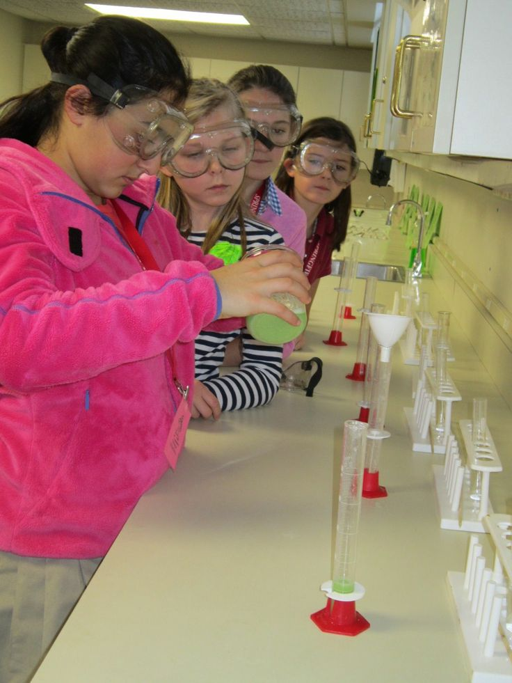 Students extract DNA during a recent Forensic Science field trip program at the Springfield Science Museum.