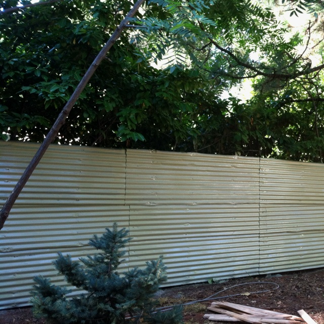 Painted corrugated metal fence outdoor ideas pinterest for Garden fencing ideas metal
