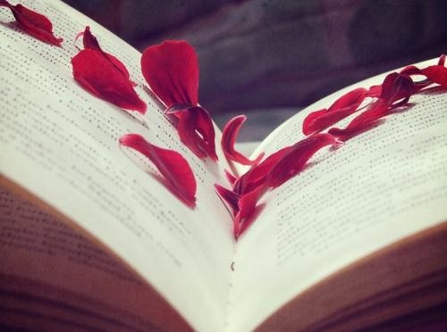 rose petals book