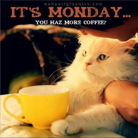 Image result for monday coffee images